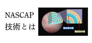 NASCAP技術とは